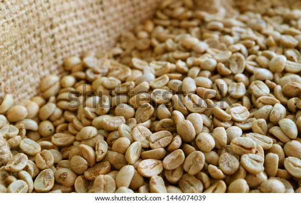 Unroasted Coffee Beans >> Pile Unroasted Coffee Beans Burlap Bag Stock Image