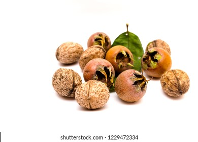 A pile of walnuts and medlars on a white background