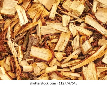 Pile of wood chips and sawdust can be used for biofuel manufacturing. Wood chips in pile