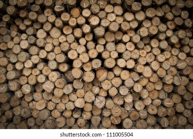 Pile of wood logs ready for winter - landscape exterio