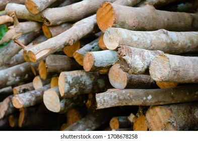 Pile of Wood Sticks for Firewood Used.