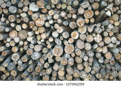 Pile of wooden logs for winter fire wood