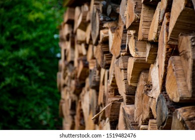 A pile of woods ready for winter, dry wood from oak trees