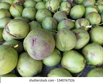 A pile of young coconut just arrived in the market.