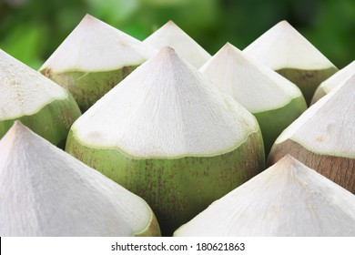 pile young coconut on garden background, refreshing