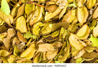 The piled dried vanilla of yellow color. With vanilla various other grasses together lie