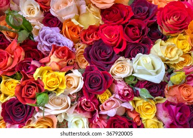 Piled on top of one another to create a wall of roses, this creates a colorful vibrant random background.  A great display in a open air market.