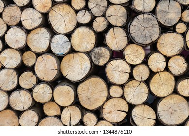 piled tree trunks. Sawn timber wood
