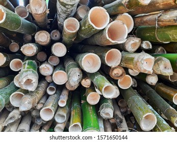 Piles of bamboo that has been cut, elongated circle, not in focus
