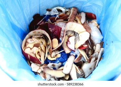 Piles of everyday kitchen household waste and vegetable peelings in a blue plastic bag and bin