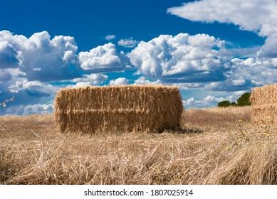 Pilas de paja, agricultura en verano, paisaje rural ...