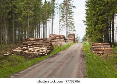 Piles of timber along the forest road