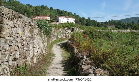 Pilgrim trail between Barcelos and Ponte de Lima on the Camino de Santiago, Portugal