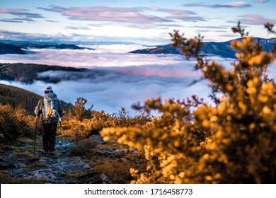 Pilgrim walking in Camino de Santiago, over a sea of clouds in the middle of the nature. We can see the icon of the shell.