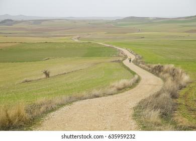Pilgrims walking through endless green fields under the sun of a way of st james