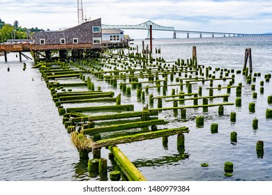 The piling and support beams are all that remains of a fish cannery on the Astoria waterfront, the Astoria-Meagler bridge in background