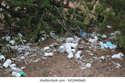 Pill Bottles Strewn in the Woods by Junkies shooting up, Santa Fe, NM/USA (June 1, 2019)