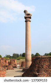 The pillars found at Vaishali with single lion capital