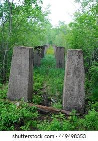 Pillars in the woods