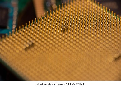 Pin grid array on a CPU showing rows of golden pins.