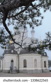 Pine branch with dark green needles closes the church building from above. Domes of Orthodox Foros Church are covered with white fog. Romantic picture of autumn Crimea.
