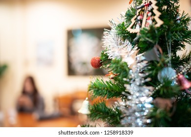 Pine and Christmas gift boxes