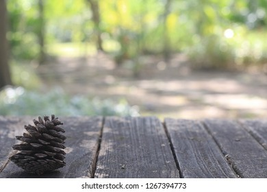 Pine cone on table with nature blurry bokeh background.