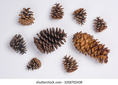 Pine Cones Flat Lay Top View White Background Close Up