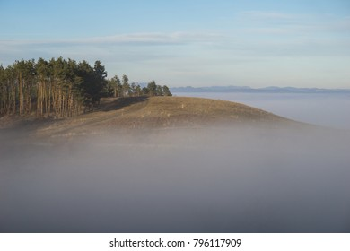 Pine covered hilltop rising above a sea of fog in the Carpathian mountains of Transylvania