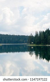 Pine forest and clouds reflected in lake, Zabljak, Montenegro, 2018