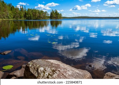 pine forest reflection in the lake in the Salamajarvi National Park, Finland