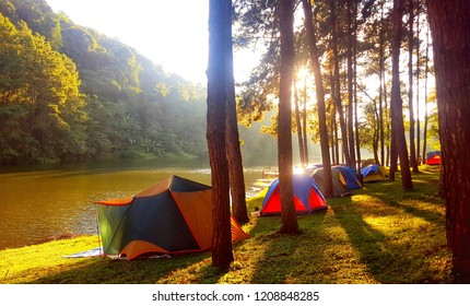 In the pine forest there is a tent set up and next to the river with light shining in the evening.