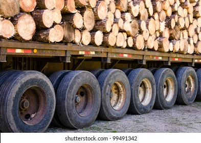 pine logs stacked on a flat bed trailer.
