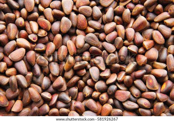 Pine nuts - small seeds of Siberian cedar pine.
