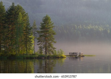 Pine and pier in a early summer morning. Finnish lake with forest around it.