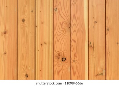 pine polished Wood wall surface, texture and background
