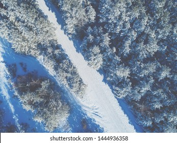 Pine snowy forest  and winter road. Trees covered with snow. Aerial view.