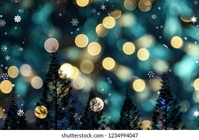 Pine tree with bokeh light background, Christmas tree theme