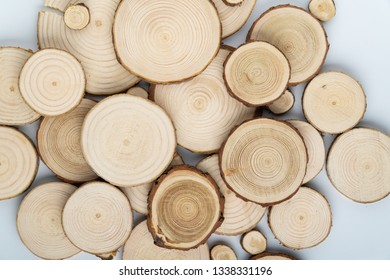 Pine tree cross-sections with annual rings on white background. Lumber piece close-up, top view.