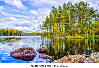 Pine tree forest lake landscape. Forest lake in Karelia. Autumn forest lake in Karelia. Forest lake water view