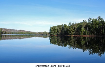 Pine trees and blue sky reflected in north woods lake, Wisconsin