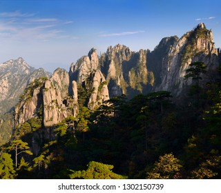 Pine trees at The Eighteen Arhats Worshipping at South Sea and Camel Back Peak at Yellow Mountain Huangshan China