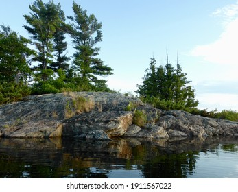 Pine Trees and Granite at Golden Hour on Georgian Bay Ontario