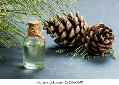 Turpentine Tree Images, Stock Photos & Vectors | Shutterstock