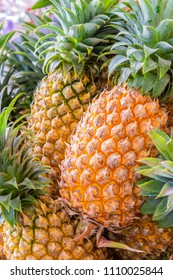 Pineapple for background. pineapple in the market.