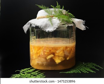 Pineapple fermentation with sugar and water in glass bottle  for kombucha tea, black background.