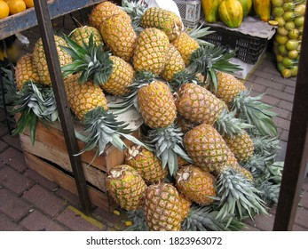 Pineapple fruits on market stall in Ecuador