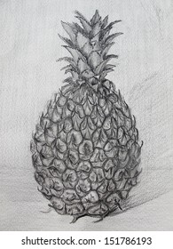 pineapple, graphite pencils on watercolor paper