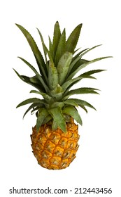 pineapple on paper background