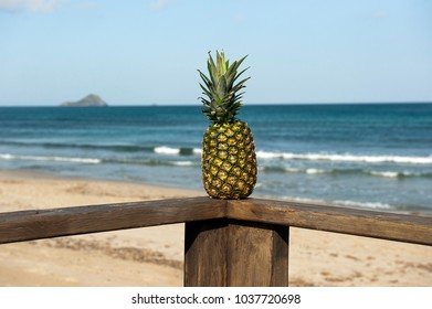 pineapple on wooden handrails with Mediterranean sea on its background
